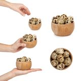 Set of quail eggs in wooden bowl, woman hands, isolated on white background.  Stock Image