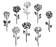 Set różani kwiaty Zdjęcia Stock