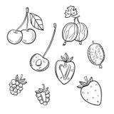 Set różne jagody na białym tle Fotografia Royalty Free