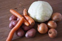 Set różni świezi warzywa obraz stock