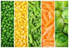 Set różni organicznie marznący warzywa ilustracja wektor