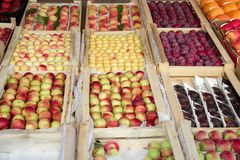 Set różnorodne kolorowe świeże owoc w tacy na ulicie obrazy stock