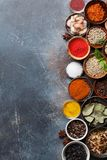 Set różnorodne pikantność i ziele zdjęcie royalty free