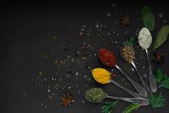 Set różnorodne pikantność i ziele na czerni krytykujemy tło fotografia royalty free