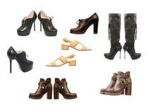 Set różnorodni kobieta buty odosobniony obraz royalty free