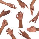Set różnorodni ręka gesty odizolowywający na bielu Fotografia Stock