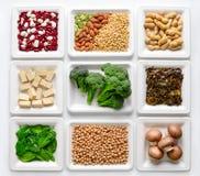 Set różnorodni weganin proteiny źródła zdjęcie royalty free