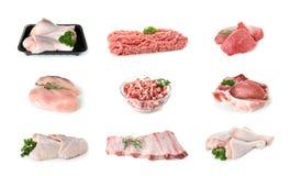 Set różnorodny świeży surowy mięso zdjęcie stock