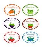 Set różna etykietka z ogrodowymi jagodami obrazy stock