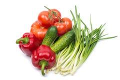 Set różnorodni warzywa Obraz Royalty Free