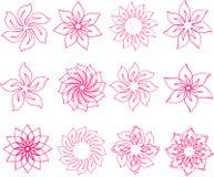 Set różowi kwiaty Obrazy Stock