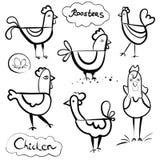 Set ręka rysujący kurczaki i koguty Scetch ilustracja Czarny kontur na białym tle royalty ilustracja