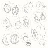 Set ręka rysujący nakreślenie tropikalnych owoc część 2 Zdjęcie Stock