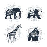 Set ręki rysować etykietki z zwierzę wektorowymi ilustracjami i l Zdjęcie Royalty Free