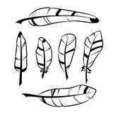 Set ręki rysujący piórka Fotografia Stock