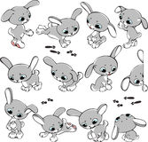 Set of rabbits. Set of cheerful and playful rabbits in different poses Royalty Free Stock Images