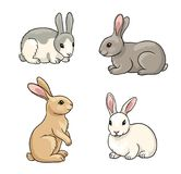 Set of Rabbits - vector illustration Royalty Free Stock Photo