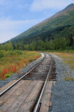 Railroad tracks in an Alaskan Landscape. A set of railroad tracks disappearing into the distance in an Alaskan landscape of trees next to a green mountain Royalty Free Stock Photos