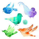 Set of random birds with watercolor Stock Images