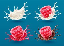 Set of raspberry berries in milk and juice splashes Royalty Free Stock Photos