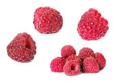 Set of raspberry isolated stock image