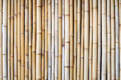 A set of rattan arrange side by side Royalty Free Stock Photo