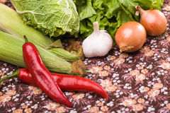 Set of raw cooking vegetables Royalty Free Stock Image