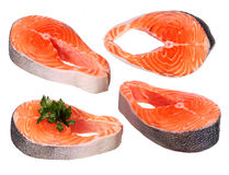 Set of raw salmon pieces with parsley isolated Royalty Free Stock Photo
