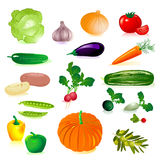 Set of raw vegetables Stock Photography