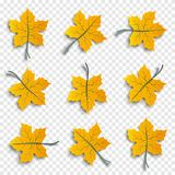 Set of realistic autumnal paper cut tree leaves with shadows isolated on transparent background, design elements for autumn season Royalty Free Stock Photos