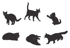 Set of realistic black cat silhouette Royalty Free Stock Images