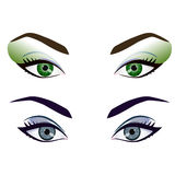 Set of realistic cartoon vector female eyes and brows Royalty Free Stock Image