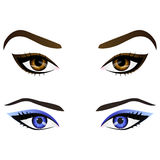 Set of realistic cartoon vector female eyes and eyebrows Stock Photos