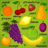 Set it is realistic the drawn fruit. Stock Photos