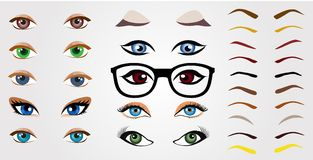 Set of realistic human eyes, eyebrows and glasses for design. Set of realistic human eyes, eyebrows and glasses for design isolated on white background. Vector Royalty Free Stock Photo