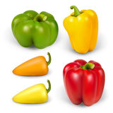 Set realistic peppers Stock Photo