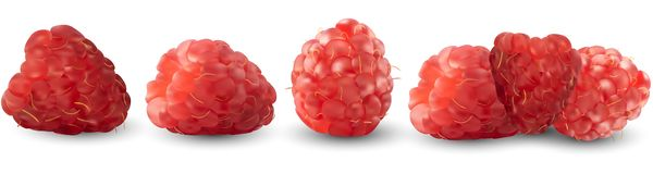 Set of realistic raspberries isolated against a white background. Vector illustration. Useful fruits, vitamins. royalty free illustration