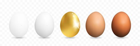 Set of Realistic White and Brown Whole Chicken Eggs. 3d Vector Illustration of Five Egg Collection stock illustration