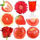 Set of red fruits, vegetables and flowers Stock Photos