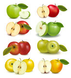 Set of red and green apple fruits. With cut and green leaves. Vector illustration Royalty Free Stock Photography