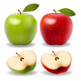 Set of red and green apple fruits Stock Image