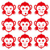 Set of red monkey. Stock Photo