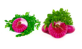 Set of Red Onions and Parsley Royalty Free Stock Photos