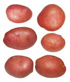 Set red potatoes isolated on white background Royalty Free Stock Photography
