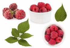 Set of red raspberries with leaves. Raspberries in a bowl isolated on white background. Vegetarian or healthy eating. Juicy and de. Licious raspberry with copy Stock Images