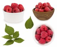 Set of red raspberries with leaves. Raspberries in a bowl isolated on white background. Vegetarian or healthy eating. Juicy and de. Licious raspberry with copy Royalty Free Stock Photography