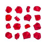 Set of red rose petals on white. Set of 16 red rose petals on white background royalty free stock photography