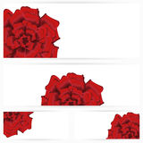 Set of red roses isolated on white background. Set of single beautiful red rose isolated on white background, illustrated with Illustrator CS and EPS10. Vector Stock Photo