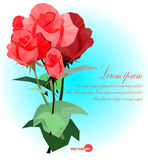 Set of red roses with leaf and stems  Vector illustration for card, banners, posters. Royalty Free Stock Images