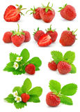 Set of red strawberry fruits with green leafs